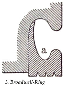 Fig. 3. Broadwell-Ring.